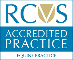 Summerleaze Is RCVS Equine Accredited